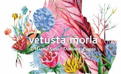 Vetusta Morla mismo Coruña concierto